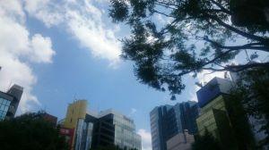 気持ちがいい、夏の日だ!